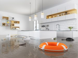 water damage restoration greenville sc, water damage repair greenville sc, water damage cleanup greenville sc